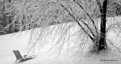 Frozen Winter Scene